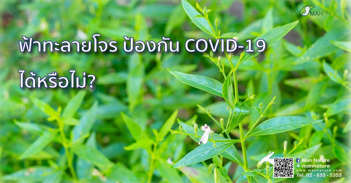 ฟ้าทะลายโจร ป้องกัน COVID-19 ได้หรือไม่?