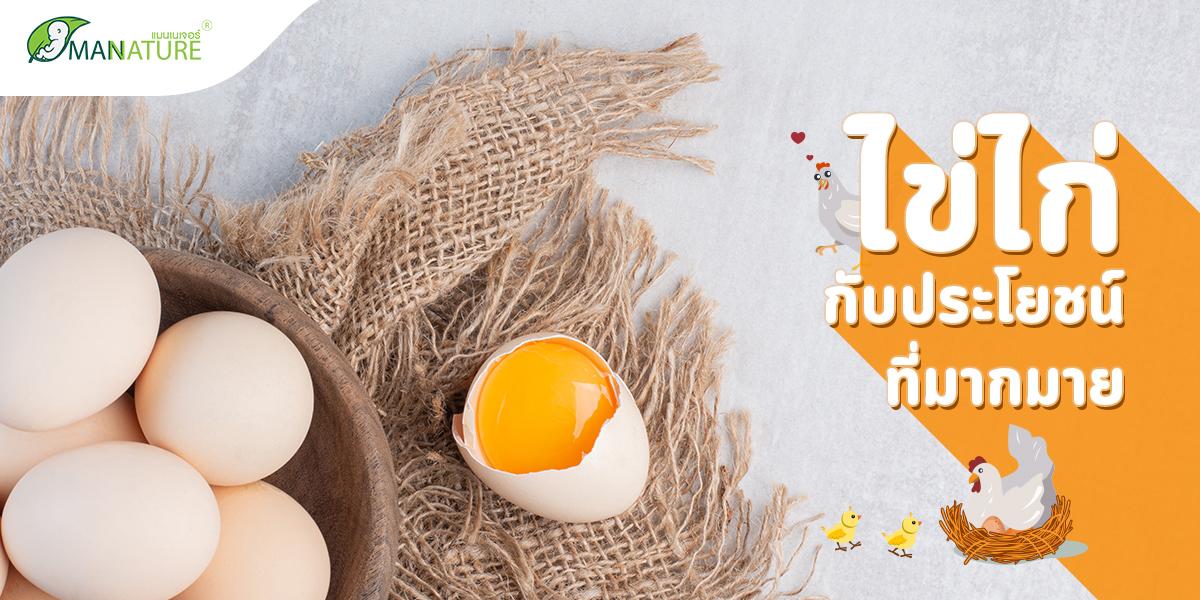 ไข่ไก่ กับ ประโยชน์ ที่มากมาย