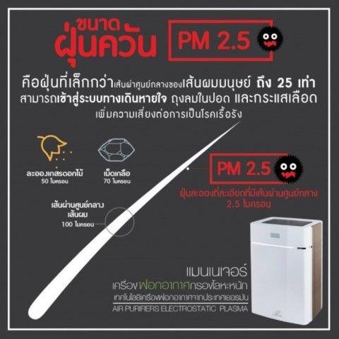 PM 2.5 ฝุ่นพิษ ภัยต่อสุขภาพ